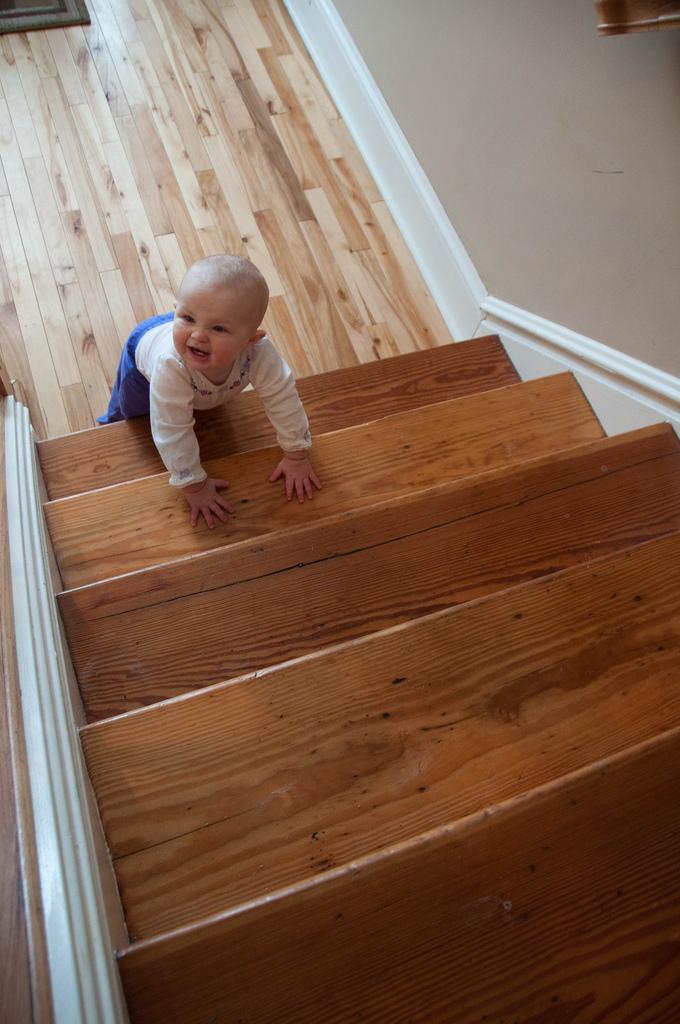Toddler Safety image