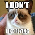 Grumpy_Cat_Flying