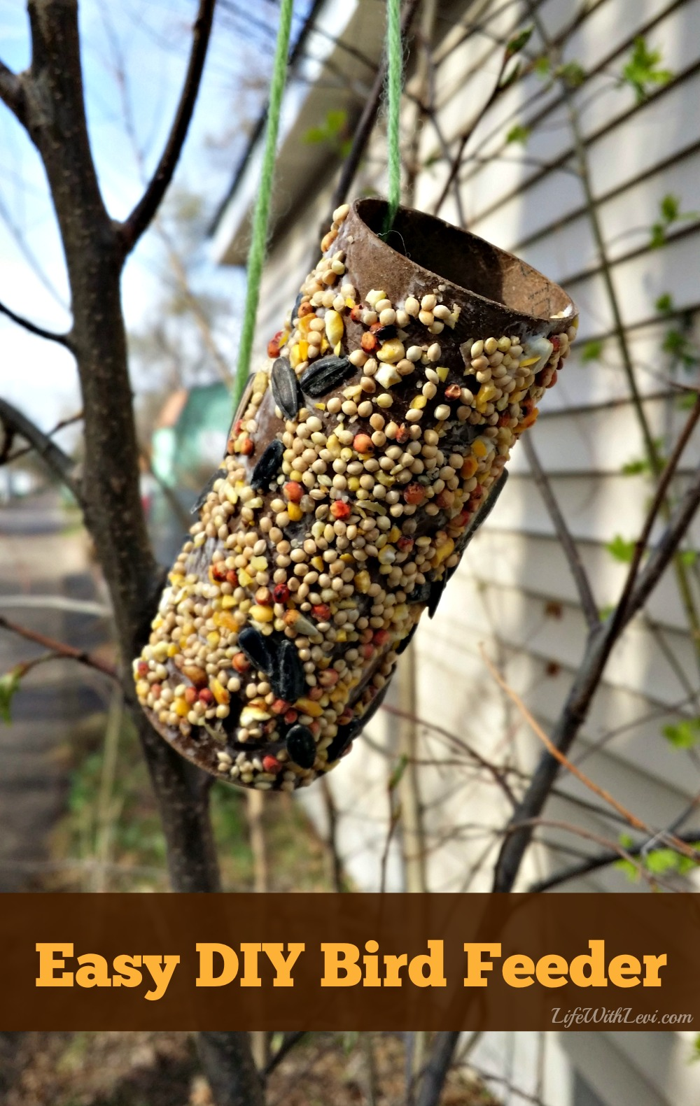 bird feeder craft for preschoolers preschool activity make a bird feeder from a toilet paper 254